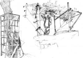 Tree Studies, 7 x 10 inches, ballpoint pen, 2004.